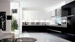modele cuisine cuisine noir et blanc laque