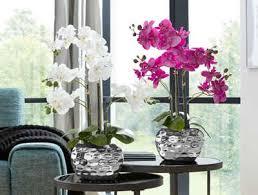 kunstpflanze orchidee orchidee creativ green höhe 55 cm