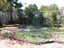Garden Design: Garden Design With Backyard Makeover Ideas Easy ... Budget Backyard Makeover Remade For Cocktails Movies And More Fabulous Best Design Ideas With Interior Home Free Garden Landscaping Inspiring X With Five Steps To A Total From Everyday Maintenance Toplete Replants Makeovers Patio No Lawn New Diy Before After Of My Backyard Depot Backyards 25 Makeover Ideas On Pinterest Diy Landscaping Brooklyn For Best 20 Pinterest Small Landscape Designs