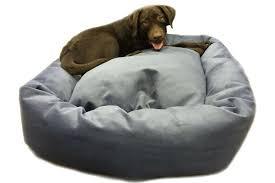 Oversized Dog Beds Wondrous Bed Big Amazon Furniture Shrimpy