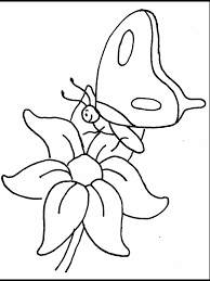 Butterfly And Flower Coloring Pages Free Printable