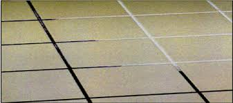 grout mold removal philadelphia pa grout cleanup