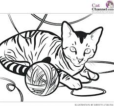 House Cat Coloring Page Printable Download Free