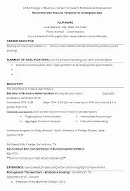 Summary Qualifications Resume Examples Customer Service Awesome Highlight Statement