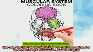 FREE PDF Muscular System Coloring Book Now You Can Learn And Master The With Ease BOOK ONLINE