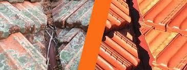 why do i moss and mould on my terracotta roof