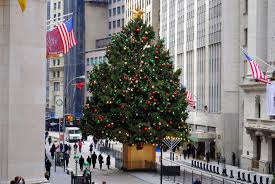 Christmas Tree Types by 15 Ny Christmas Tree Different Types Of Hardwood Trees