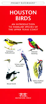 Houston Birds The Joy Of Bird Feeding Essential Guide To Attracting And Birders Break Records For Great Backyard Count Michigan Radio New Guides Backyard Birding Add Birders Joyment Aerial Birds Socks Absolute Birding Co East Petersburg Shopping Authentic Common Redpoll Photosgreat South 100 Watcher Attract To Your Best 25 Watching Ideas On Pinterest Pretty Birds In Burlington Vermont Photos In Winter Get Ready For Photo 20 Best Birdfeeders Images Feeding Station