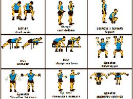 musculation pour tous programmes exercices et conseils
