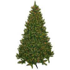 Christmas Tree Farm Near Lincoln Nh by Christmas Trees Walmart Com