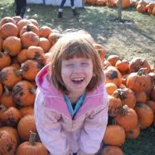 Best Pumpkin Patches Near Milwaukee by Swan Pumpkin Farm 15 Photos U0026 12 Reviews Pumpkin Patches