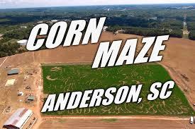Denver Pumpkin Patch Corn Maze by Denver Downs Anderson South Carolina Youtube