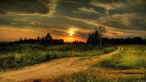 1920x1080 Wallpaper Decline Road Country Signature Evening Twilight Wood