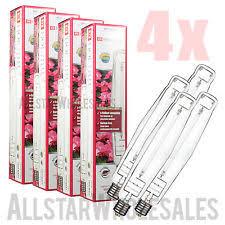 1000 Watt Hps Bulb Hortilux by Plantmax 250w Hps Lamp Grow Bulb High Pressure Sodium 250 Watt
