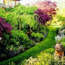 low maintenance perennials of the pacific northwest