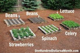 No Fuss Vegetable Pallet Garden
