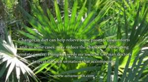 Pumpkin Seeds Prostate Cancer by Latest Treatment For Prostate Enlargement Dailymotion