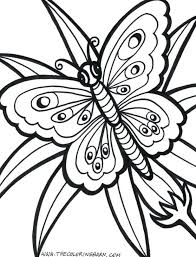 Detailed Butterfly Printable Coloring Pages Page For Adults Life