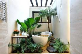Plants For The Bathroom Feng Shui by Bamboo Plants In Bathroom Feng Shui Best For Bathrooms Peace Lily