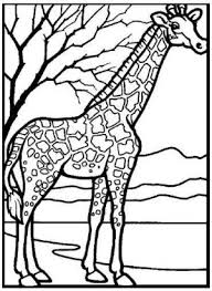 ZOO ANIMALS Printable Coloring EBook On CD