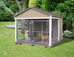 Dog Kennels Available | Pine Creek Structures Whosale Custom Logo Large Outdoor Durable Dog Run Kennel Backyard Kennels Suppliers Homestead Supplier Sheds Of Daytona Greenhouses Runs Youtube Amazoncom Lucky Uptown Welded Wire 6hwx4l How High Should My Chicken Run Fence Be Backyard Chickens Ancient Pathways Survival School Llc Diy House Plans Deck Options Refuge Forums Animal Shelters The Barn Raiser In Residential Industrial Fencing Company