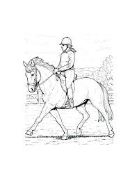 Printable Horse Coloring Pages Realistic Free