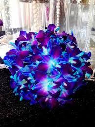 Best 25 Blue Purple Wedding Ideas On Pinterest