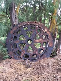 Kahuku Sugar Mill Artifact. This Gear Was Used In The Mill. It Is ... Thunder Redliner Hollow Lights Skateboard Trucks Hi Old 1987 Toyota Pickup Truck Hilux 24d Diesel Engine Part 2 Kahuku Oahu Hawaii February 27 2017 Kalbi On Fire Bbq Food Oneill Zigram23 Used Dodge For Sale In Oahu Best Truck Resource The North Shore Hilton Hawaiian Village Honolu Hawaii Not 2006 Ford F150 Pickup 12t Extended Cab 2wd Lic 115 2005 4wd 515 Exhaust Systems Kailua Shrimp Stock Photos Images Alamy Yellow Firetruck Engine