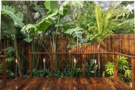 100 Bali Garden Ideas Balinese Garden Ideas Bamboo Along Fence Nese Garden