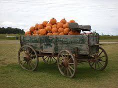 Bengtson Pumpkin Farm Lockport by Bengston U0027s Pumpkin Farm Lockport Il Kid Friendly Activity