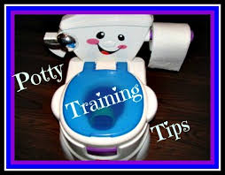 Potty Chairs For Toddlers by Best 25 Potty Chairs For Boys Ideas On Pinterest Colors For