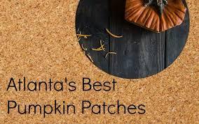 Atlanta Pumpkin Patch Corn Maze by Best Pumpkin Patches