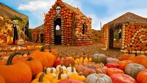 Best Pumpkin Patch Livermore by The 5 Best California Pumpkin Patches U2013 Ca Limited