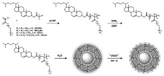 Non linear PEG based thermoresponsive polymer systems ScienceDirect