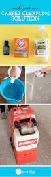 Diy Drano For Bathtub by How To Make A Natural Carpet Cleaning Solution Carpet Cleaning