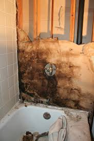 how to remove mold from wall above shower image bathroom 2017