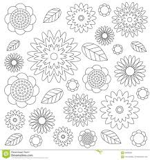 Vector Adult Coloring Book Floral Pattern Black And White Flowers Leaves Identifying Pages