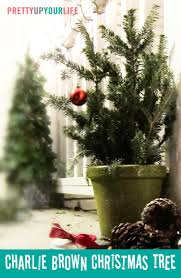 Potted Christmas Tree by 16 Best Charlie Brown Christmas Trees Images On Pinterest