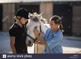 Female Jockey Looking At Vet Stroking Horse In Barn Stock Photo ... Professional Senior Vet Standing Near Calves Barn In Livestock Veterinary Skills Center Lincoln Memorial University About Us Meadowridge Hosp Groton Ny Red Hospital Vetenarian Dahlonega Ga Usa Houses Missing Family House Old Wooden Shed Pine Path Photo Gallery Mccmaple Woods Tech Hosts Successful Haunted Farmer And Vet With Turkey In Barn Stock Royalty Free Image Midsection Of Female Examing Horse At Project 365 Day 16 Vintage Emily Carter Mitchell Sugar Factory Clinic Horse Stethoscope Photos