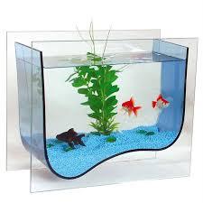 aquarium design vague achat vente aquarium aquarium design