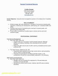 Contract Terms And Conditions Template Lovely Standard For Services
