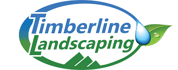 Christmas Tree Permit Colorado Springs 2014 by The Incline Phase Iii Construction Timberline Landscaping Inc