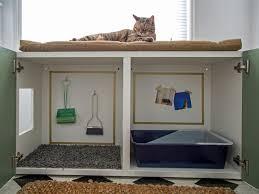 Cat Litter Carpet how to conceal a kitty litter box inside a cabinet hgtv