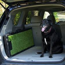 The Best Dog Ramps Reviewed - Helping You To Make The Right Choice Solvit Deluxe Xl Telescoping Pet Ramp Champ Telescopic Dog From Easy Animal 5 Foot Folding For Cardoor Lweight Anti Slip Mr Hzhers Smart 70 Reviews Wayfair Extrawide Ramps Discount Gear Travel Lite Bi Fold Full Black Blue 176263 Collapsible Loader Steps Vehicles New Suv Build A Foldable Best Suvs Cars And Trucks Pro Ultralite Bifold Chewycom