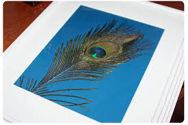 The Blue Is A Perfect Complement To Orange Walls And Come On Whats Not Love About Peacock Feathers