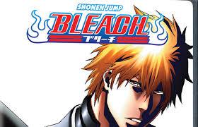 VIZ Media Announces Release Of Final BLEACH Anime Home Edition