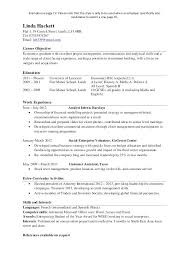 One Page Resumes Example Cute Resume In Sample Single