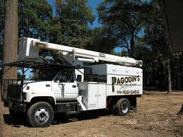 Pagodin's Tree Removal Service - Providing The Best Tree Care ... Photos Shechtman Tree Care C Lazy T Movers Bucket Truck Services Tamarack West Linn Pagodins Removal Service Providing The Best Dead Using A Boom Extension Truck By Phoenix Valley Equipment For Sale A Better Arborist Treetrimming Catches Fire In Mims Undcover Veggie Commercial Success Blog Asplundh Expert Co Taps Our Arbormax Intertional Trucks Bartlett Experts Youtube Gmc Asplundh Tree Truck V 10 Fs 17 Farming Simulator Mod