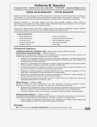 Sales Manager Resume Summary Examples Sales Executive Resume Sales ... Sales Executive Resume Elegant Example Resume Sample For Fmcg Executive Resume Formats Top 8 Cporate Travel Sales Samples Credit Card Rumeexampwdhorshbeirutsales Objective Demirisonsultingco Technology Disnctive Documents 77 Format For Mobile Wwwautoalbuminfo 11 Marketing Samples Hiring Managers Will Notice Marketing Beautiful 20 Administrative Pdf New Direct Support