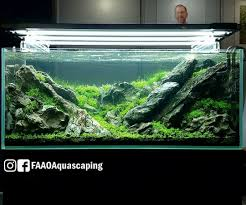 Layout By Takayuki Fukada At CIPS Exhibition In Guangzhou China ... Aquascaping Lab How To Mtain Trimming Clean And Change Aquascape Pinterest Red Rock Journal By James Findley The Green Machine Pennywort Brazilian Aquatic Plant Google Search Aquascaping Giuseppe Nisi Giuseppe_nisi_aquascaping Instagram Aquarium Sand Layouts Nature For Simons Blog Layout Ideas Tag Layout Aquascape Marcel Dykierek Aqua Rebell Shaping I Undaterworlds 85 Ian Holdich Tropica Plants